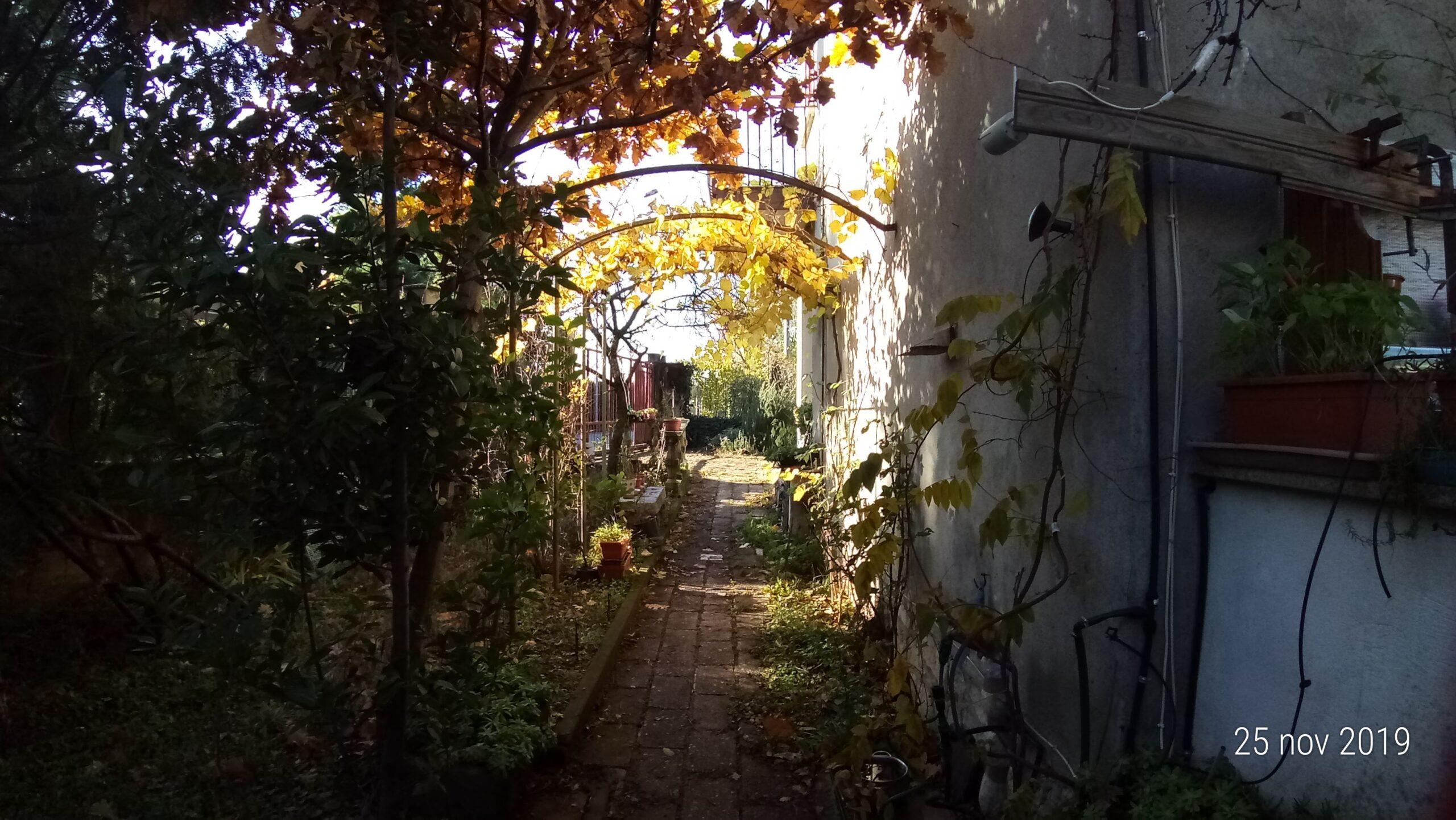 Villa singola con giardino e box